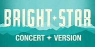 Members of the Montville Township High School Theatre Company will perform a virtual production of Bright Star: Concert Version on Thursday, Friday and Saturday, April 22, 23, & 24 at 7:30pm. Tickets are $15 and are on sale now.